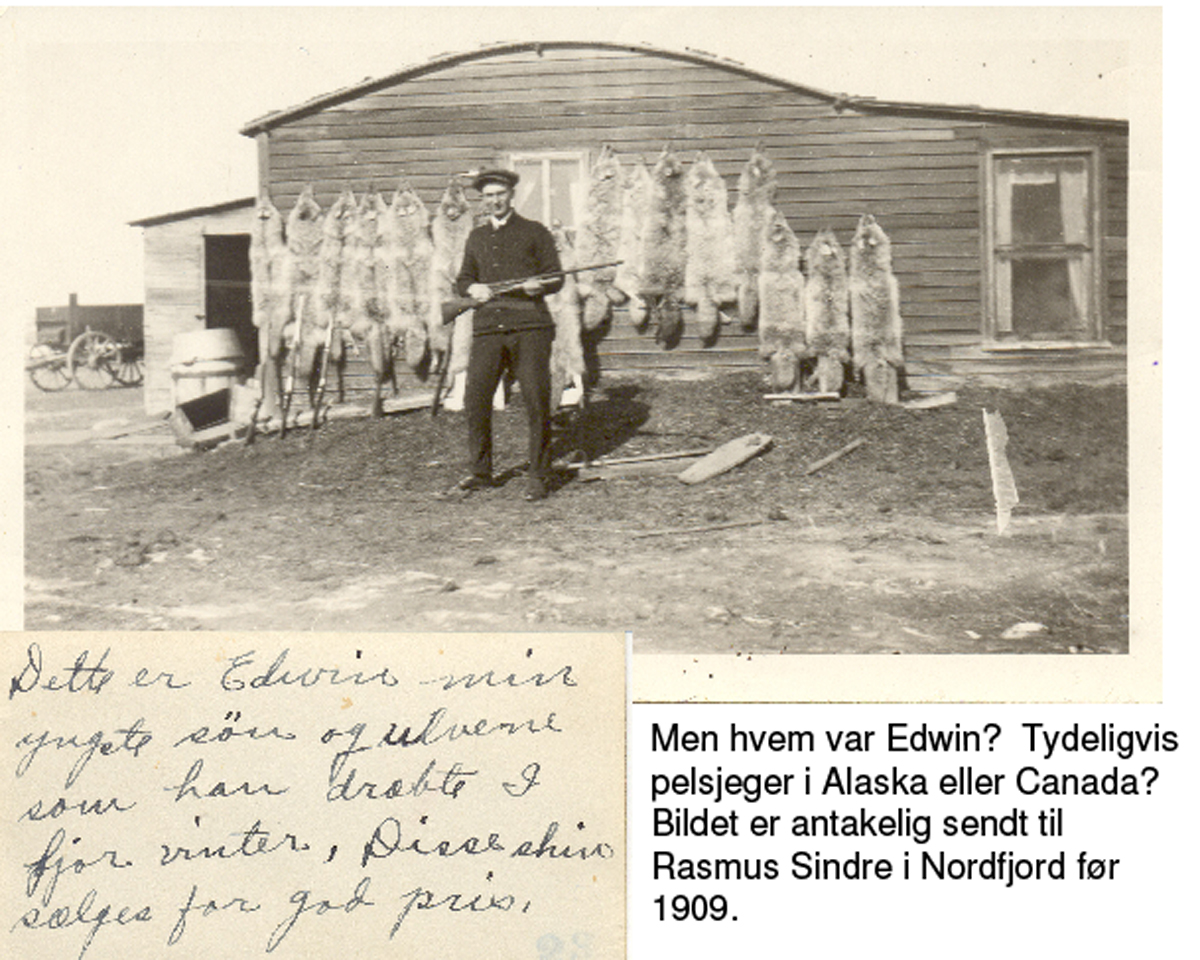 "Ukjent24.jpg - Handwritten: ""This is Edwin, my youngest son and the wolves he killed hunted last winter. He gets a good price for the furs.""  I have no idea about eho Edwin was, but he is most likely to be the son of an immigrant from Nordfjord."